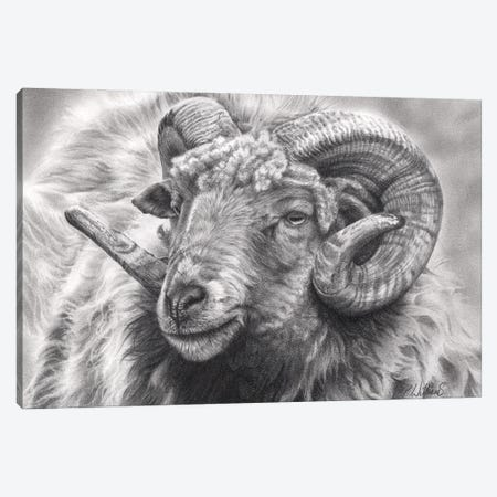 Aries Canvas Print #PWI137} by Peter Williams Art Print