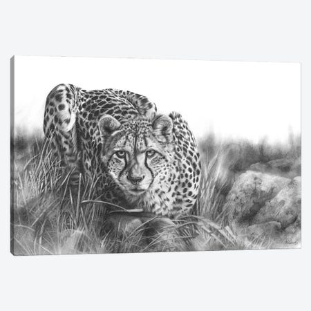 Focused Canvas Print #PWI147} by Peter Williams Canvas Artwork