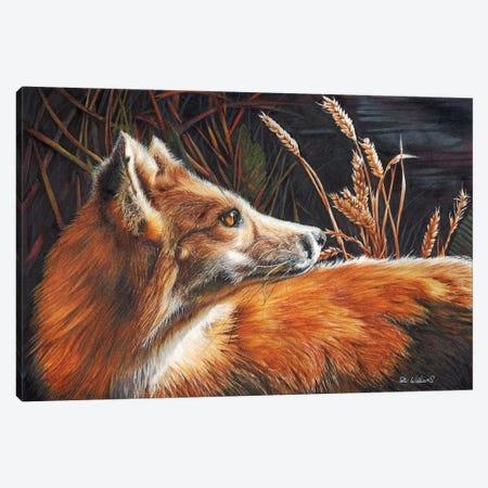 For Fox Sake Canvas Print #PWI149} by Peter Williams Art Print