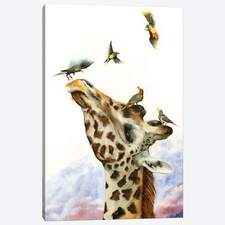 Head In The Clouds Canvas Print #PWI152} by Peter Williams Canvas Art