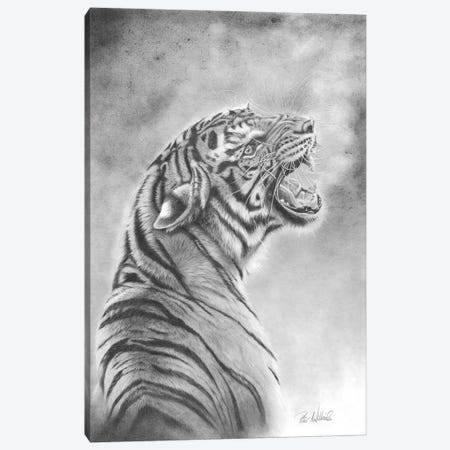 Look Back In Anger Canvas Print #PWI155} by Peter Williams Art Print