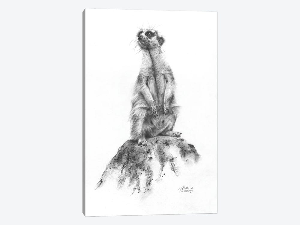 Meerkat Sentinel by Peter Williams 1-piece Canvas Art Print