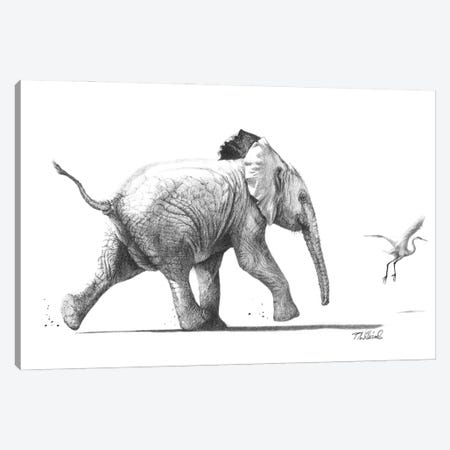 No Egrets Canvas Print #PWI159} by Peter Williams Canvas Artwork
