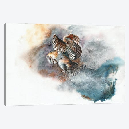 Snow Patrol Canvas Print #PWI166} by Peter Williams Canvas Artwork