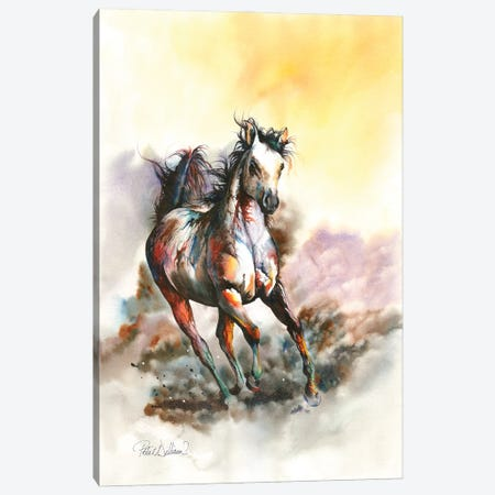 Spirit In The Sky Canvas Print #PWI168} by Peter Williams Art Print