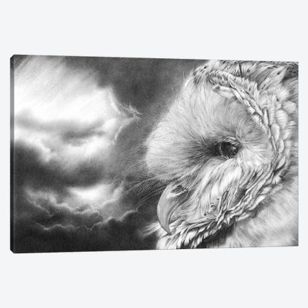 Keeper Of Secrrets Canvas Print #PWI187} by Peter Williams Canvas Wall Art