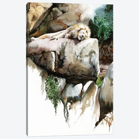 Power Nap Canvas Print #PWI188} by Peter Williams Canvas Art Print