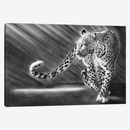 Walk The Walk Leopard Canvas Print #PWI197} by Peter Williams Art Print