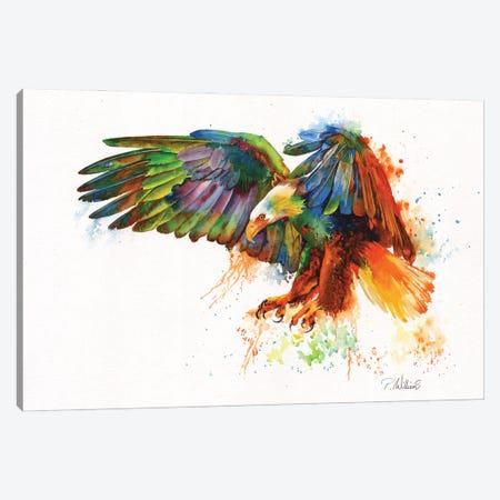 Rainbow Warrior Canvas Print #PWI199} by Peter Williams Canvas Wall Art