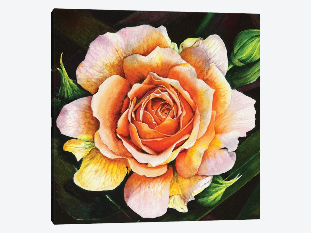 Blooming Marvellous by Peter Williams 1-piece Canvas Art