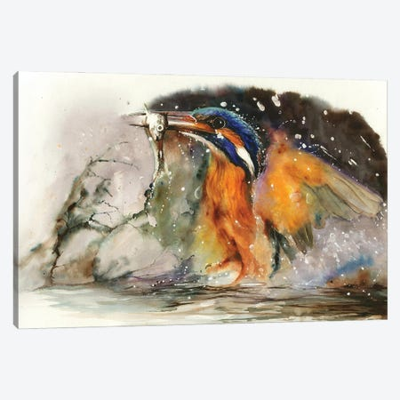 A Flash Of Brilliance Canvas Print #PWI1} by Peter Williams Canvas Wall Art