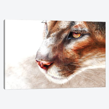 Ghost Canvas Print #PWI208} by Peter Williams Canvas Wall Art