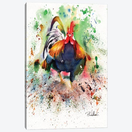 Charging Chicken Canvas Print #PWI26} by Peter Williams Art Print