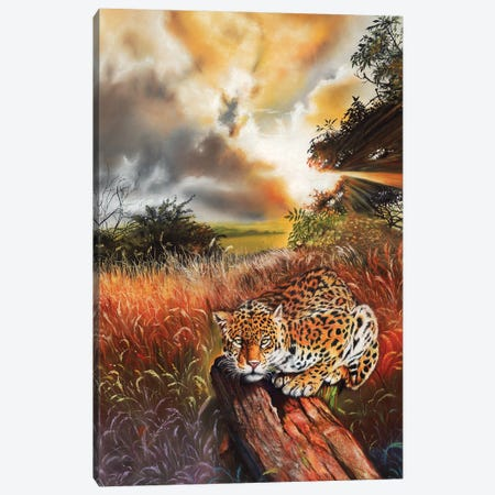 Domain Canvas Print #PWI34} by Peter Williams Canvas Art