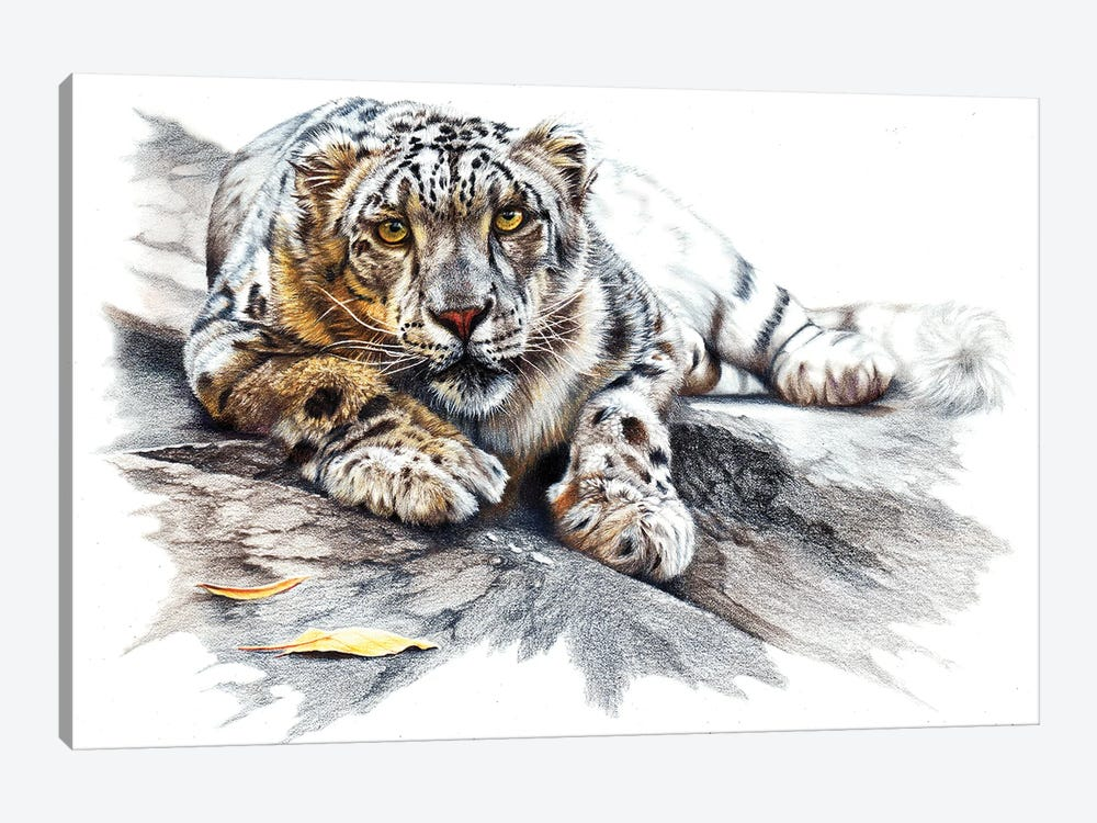 Ethereal Spirit by Peter Williams 1-piece Canvas Print