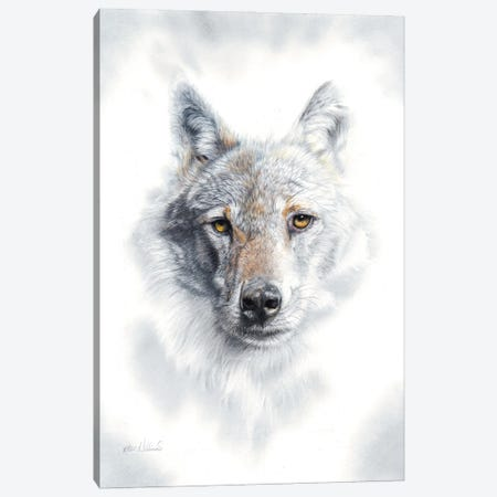 Fade To Grey Canvas Print #PWI43} by Peter Williams Canvas Art