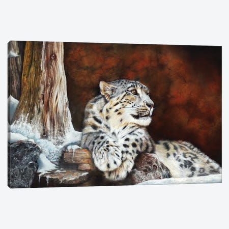 Fire And Ice Canvas Print #PWI45} by Peter Williams Art Print