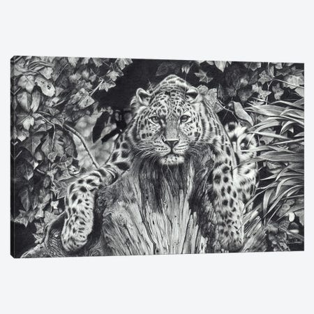 A Force Of Nature Canvas Print #PWI46} by Peter Williams Art Print