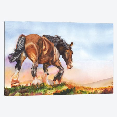 Golden Days Canvas Print #PWI49} by Peter Williams Canvas Wall Art