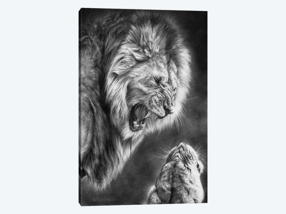 Heat Of The Night by Peter Williams 1-piece Canvas Wall Art