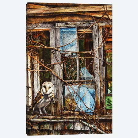 Hooter's Drum Canvas Print #PWI58} by Peter Williams Canvas Art Print