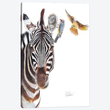 The Horse Whisperer Canvas Print #PWI59} by Peter Williams Art Print