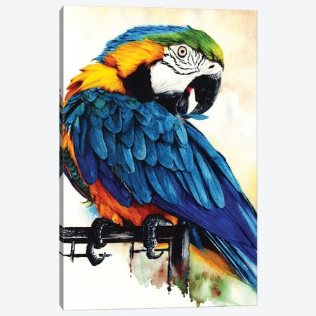 Jinx Canvas Print #PWI66} by Peter Williams Canvas Print