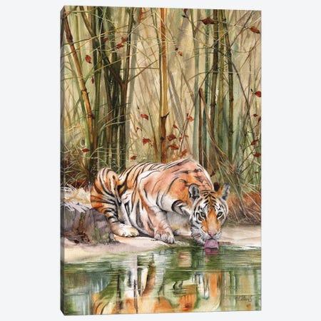 Jungle Spirit Canvas Print #PWI67} by Peter Williams Canvas Art Print