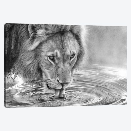 Lapping It Up Canvas Print #PWI69} by Peter Williams Canvas Artwork