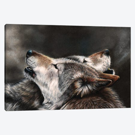 One Last Song Canvas Print #PWI80} by Peter Williams Canvas Wall Art