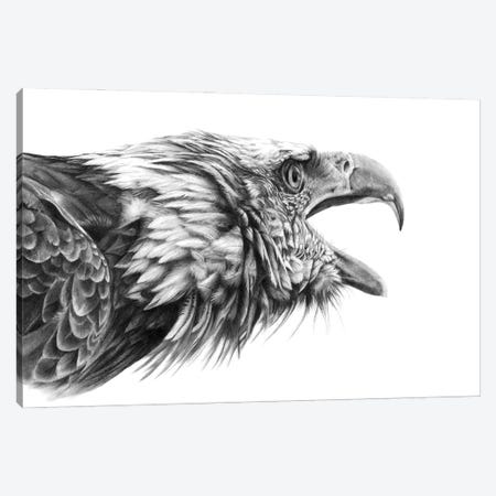 Screaming Eagle Canvas Print #PWI92} by Peter Williams Canvas Art Print