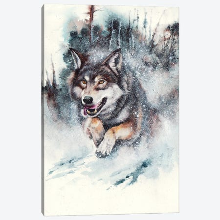 Snow Storm Canvas Print #PWI99} by Peter Williams Art Print