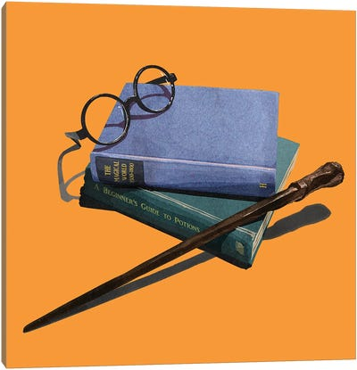 A Wizard's Education Canvas Art Print