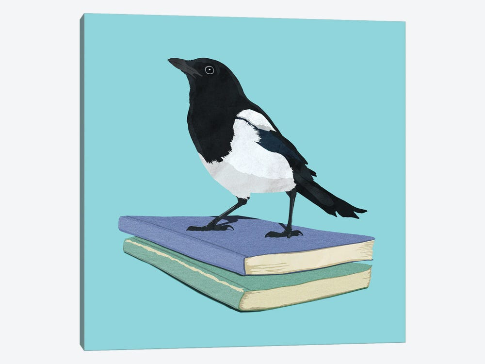 Magpie Librarian by Peter Walters 1-piece Canvas Artwork