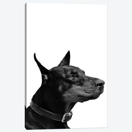 Mono Dog 3-Piece Canvas #PXY341} by Pixy Paper Canvas Art Print