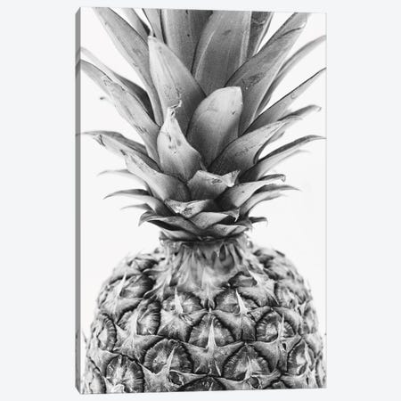 Mono Pineapple Canvas Print #PXY343} by Pixy Paper Art Print