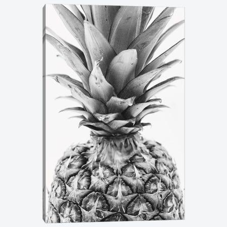 Mono Pineapple Canvas Print #PXY343} by Pixy Paper Art Print