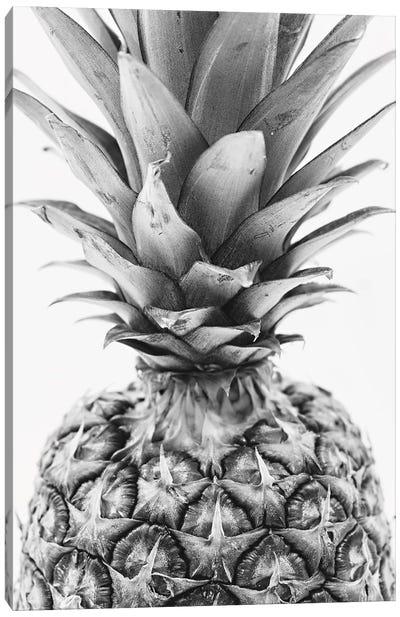 Mono Pineapple Canvas Art Print