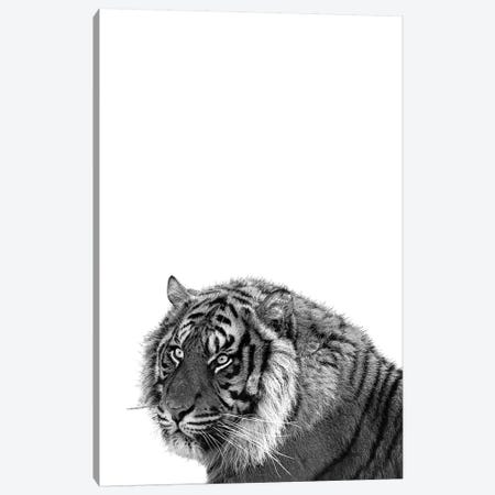 Mono Tiger Canvas Print #PXY344} by Pixy Paper Canvas Artwork