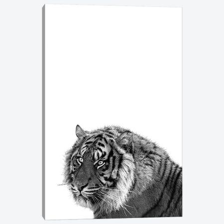 Mono Tiger Canvas Print #PXY344} by Pixy Paper Canvas Artwork