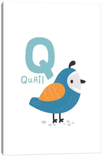 Animal Alphabet - Q Canvas Art Print