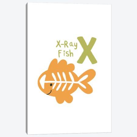 Animal Alphabet - X 3-Piece Canvas #PXY54} by Pixy Paper Canvas Wall Art