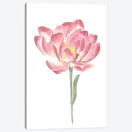 Big Pink Watercolour Flower Floral Collection Canvas Print #PXY78} by Pixy Paper Canvas Art Print