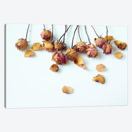 Golden Petals I 3-Piece Canvas #QNT13} by Sonja Quintero Canvas Print