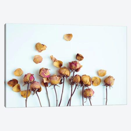 Golden Petals II Canvas Print #QNT14} by Sonja Quintero Canvas Artwork