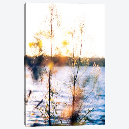 White Rock Sunset I Canvas Print #QNT15} by Sonja Quintero Canvas Artwork