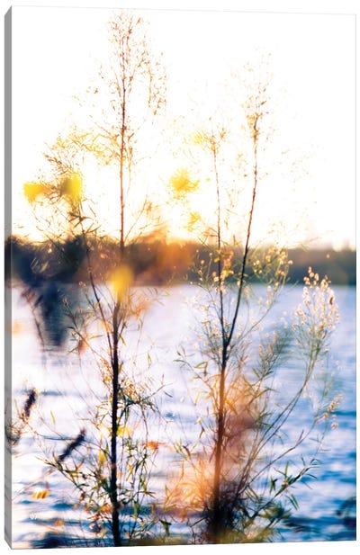 White Rock Sunset I Canvas Print #QNT15