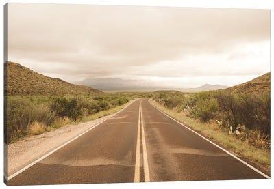 Where the Road Leads II Canvas Art Print