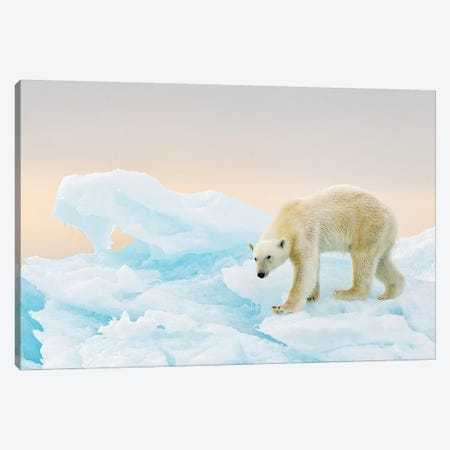 On Ice Canvas Print #RAA11} by Joan Gil Raga Canvas Artwork