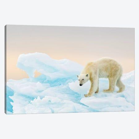 On Ice Canvas Print #RAA11} by Joan Gil Raga Canvas Artwork